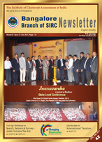 Cover of July 2013 Newsletter