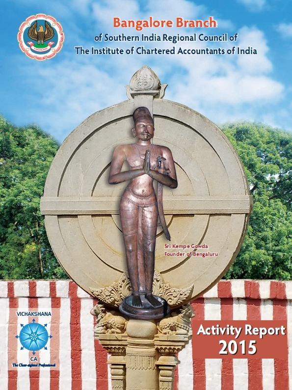 Cover of 2015 Activity Report